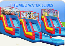 Themed Water Slides